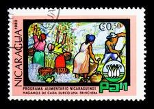Le café et la céréale cultivent, serie de jour de nourriture du monde, vers 1982 Image libre de droits