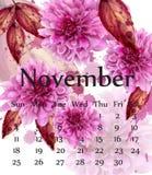 Le calendrier d'Autumn November avec les fleurs roses de marguerite dirigent Décors floraux de style d'aquarelle illustration stock