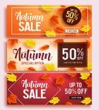 Le calibre réglé de bannière de vecteur de vente d'automne avec l'érable coloré part du fond illustration libre de droits