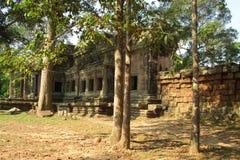 Le Cambodge Angkor Wat Jungle Temple dans un jour d'été photographie stock libre de droits