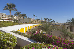 Le Camere per i viaggiatori sulla grande oasi dell'hotel ricorrono Immagine Stock