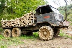 Le camion a chargé avec des logarithmes naturels Photos stock