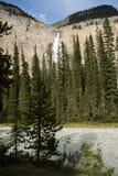 Le Canada - Colombie-Britannique - Yoho NationalparkCanada - C britannique Photos libres de droits