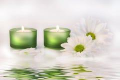 Le candele e le margherite verdi si avvicinano alla riflessione dell'acqua Immagini Stock