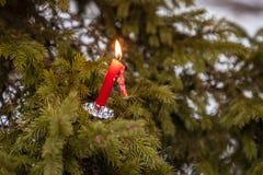 Le candele sono sull'abete rosso fotografia stock