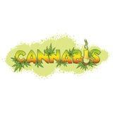 Le cannabis e Bong il fondo Fotografia Stock Libera da Diritti