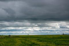 Le Canola cultive sous la nébulosité, Saskatchewan, Canada photographie stock libre de droits