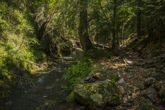 Le canyon des cascades Photos stock
