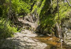 Le canyon des cascades Photographie stock