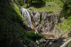 Le canyon des cascades Images stock