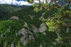 Le canyon des cascades Image stock