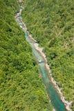 Le canyon Tara de rivière Image libre de droits