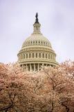 Le capitol à Washington Image stock