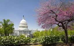 Le capitol des USA dans le Washington DC au ressort photo stock