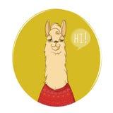 Le caractère mignon de lama indique salut ! à vous ! Affiche animale vue de portrait Illustration de vecteur Photographie stock