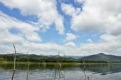 Le carcasse di legno sull'acqua e sul cielo blu riflette la superficie in diga di Srinakarin Immagine Stock