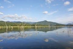 Le carcasse di legno sull'acqua e sul cielo blu riflette la superficie in diga di Srinakarin Fotografie Stock Libere da Diritti