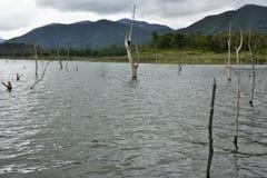 Le carcasse di legno sull'acqua e sul cielo blu riflette la superficie in diga di Srinakarin, la provincia di Kanjanaburi, Tailan Immagine Stock Libera da Diritti