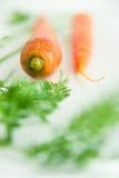 Le carote fresche con la carota va sulle mattonelle bianche Fotografia Stock Libera da Diritti