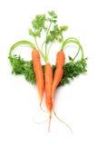 Le carote hanno organizzato nella figura del cuore immagini stock