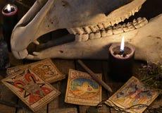 Le carte di tarocchi, lo specchio magico ed il cranio del cavallo contro le plance con il pentagramma Immagini Stock Libere da Diritti