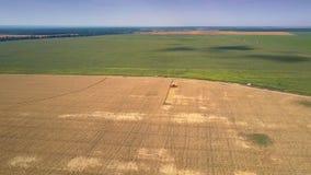 Le cartel de vue aérienne recueille le blé contre le pré vert banque de vidéos