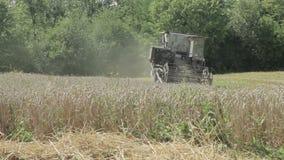 Le cartel recueille le blé clips vidéos