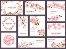 Le cartoline d'auguri della ciliegia del fiore di vettore di Sakura con la fioritura rosa della molla fiorisce l'insieme del giap illustrazione di stock