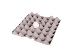 le cas eggs un Photographie stock libre de droits