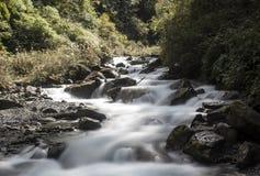 Le cascate nella scogliera Fotografia Stock