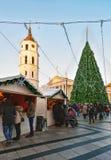 Le case del ricordo della gente e l'albero di Natale sulla cattedrale quadrano Vilnius Fotografia Stock