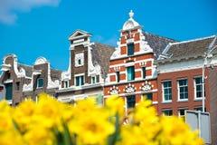 Le case olandesi con il tulipano giallo fiorisce, Amsterdam, Paesi Bassi Immagine Stock