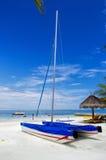 Le catamaran Photo libre de droits