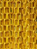Le catene di plastica gialle hanno appeso davanti all'entrata del giardino della farfalla per impedire alla farfalla di sfuggire Fotografia Stock