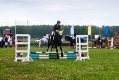 Le cavalier de jeune fille sur un cheval surmonte des obstacles Photographie stock