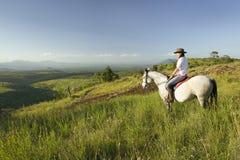 Le cavalier et le cheval de horseback femelles montent la garde de négligence de faune de Lewa au Kenya du nord, Afrique photographie stock libre de droits