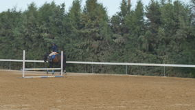 Le cavalier marche sur le cheval sur le manege banque de vidéos