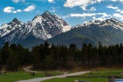 Le cavalier voyage dans les montagnes Photo stock