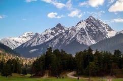 Le cavalier voyage dans les montagnes Images libres de droits