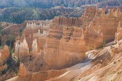 Le cayon de Bryce rougeoie dans la lumière de début de la matinée Image libre de droits
