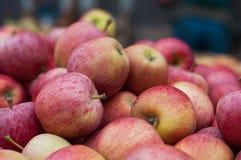 Le centinaia di mele si chiudono Immagine Stock Libera da Diritti