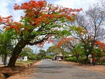 le centre de village. Image libre de droits