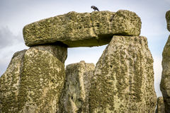Le cercle chez Stonehenge Image stock