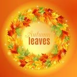 Le cercle des feuilles d'automne sur un fond orange, couleurs lumineuses d'érable, lumière, éclat Illustration de vecteur Photos libres de droits