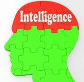 Le cerveau d'intelligence affiche l'information et l'éducation de la connaissance Photos libres de droits