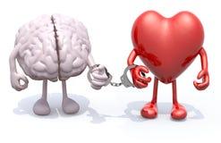Le cerveau et le coeur avec des bras et des jambes ont lié par des menottes en main illustration stock
