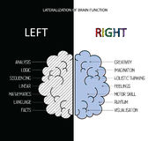 Le cerveau gauche et droit fonctionne des infos Images libres de droits