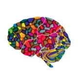 Le cerveau humain, dirigent le fond abstrait Images stock