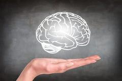 Le cerveau tiré a plané au-dessus de la main humaine Photo stock