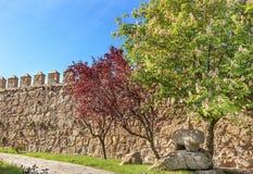 Le château antique de statue de Taureau mure la Castille Espagne d'Avila d'hirondelles Image stock